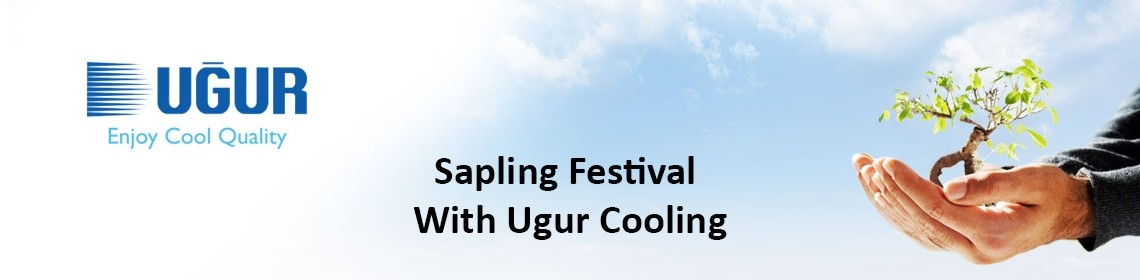 sapling festival with ugur cooling